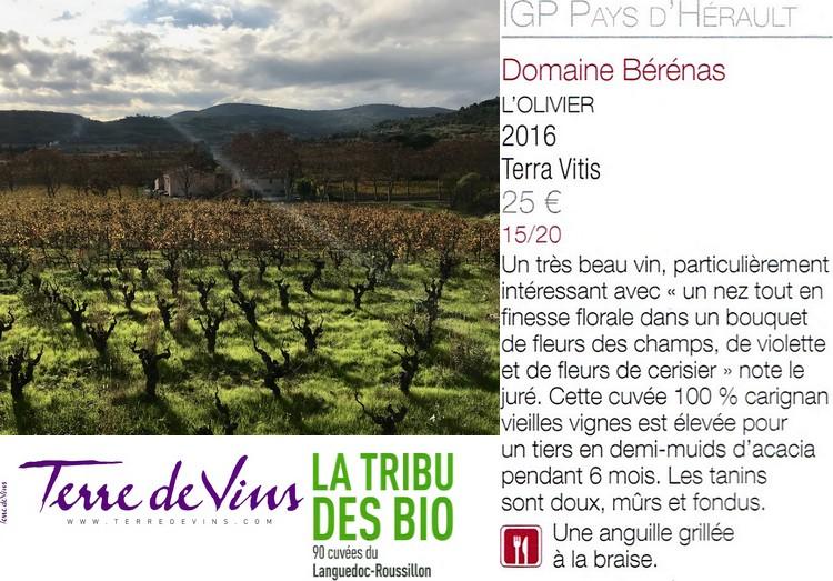 L'Olivier noté 15/20 dans Terre de vins de janvier 2019